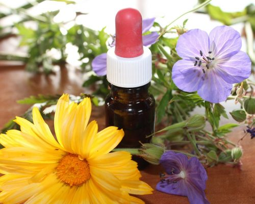 Homeopathy and Organic Treatment